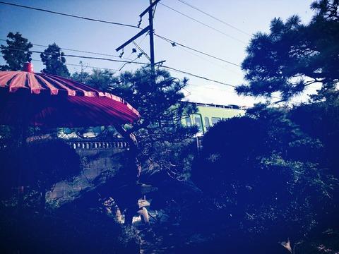 富岡市「ちゃきち」にまた潜入して来た