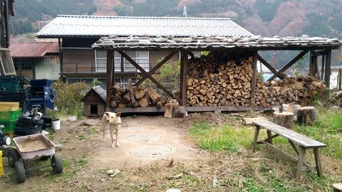 カフェ よたっこ 上野村