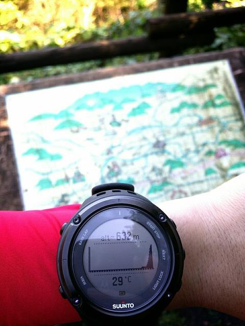 藤田峠キャンプ場までの山道をウォーキングして来たよ