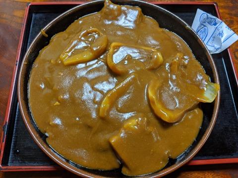 上原屋 富岡市 冷やしたぬき蕎麦 ねぎ南蕎麦 カレーライス