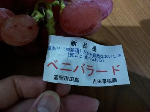 吉田果樹園のブドウ 富岡市